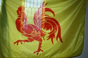 L'emblème de la Wallonie